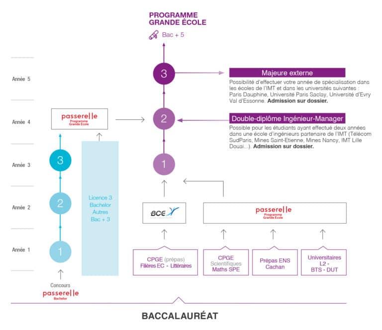 Infographie PGE Octobre2019 768x664 - Programme Grande École